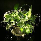 Lampada Striscia, OSAN Luci Lampade Striscia a Batteria 3MT 30 LED 4.5V per Feste Natale Halloween Decorazione Casa Giardino Bianca calda