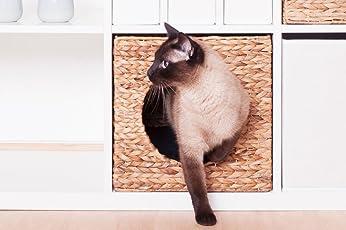 Inwona IKEA Kallax Expedit Katzenkorb 34 x 33 x 33 cm Natur Korb aus Wasserhyazinthe Tierkorb Tierhöhle Katzenhöhle Katzenbox Flechtkorb klappbar und sehr stabil ideal für Kleine Hunde und Katzen