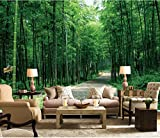 WH-PORP Schöne Foto Wandbild Tapete 3D Atmosphäre Bambus Wald Dekoration TV Hintergrund Wandbild Hd-450cmX300cm
