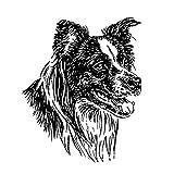 Schecker-Autoaufkleber Hundeaufkleber ideal für helle Autos Border Collie