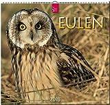 EULEN: Original Stürtz-Kalender 2018 - Mittelformat-Kalender 33 x 31 cm