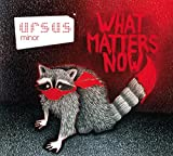 vignette de 'What matters now (Ursus Minor)'