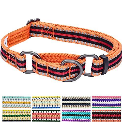 Blueberry Pet 1,5cm S 3M Reflektierendes Bunt Gestreiftes Orange und Schwarz Sicherheitstraining Martingale Hundehalsband für Kleine Hunde -