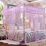* XMM -vent pastoral trois ouvrir le côté de la porte du plancher de la moustiquaire filet en acier inoxydable stent moustiquaire grand cryptage espace anti-moustiques trois en fil (200 * 220-2 m lit, Butterfly danse-violet)