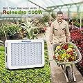 Roleadro 300W LED Pflanzenlampe von Roleadro auf Du und dein Garten