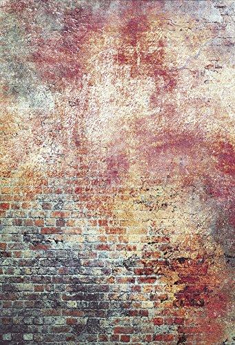 Kate 1.5x2.2m Mikrofaser Nahtlos Fotografie Hintergrund Graffiti Malerei Hintergrund Vintage Backstein Hintergründe für Fotoshootings