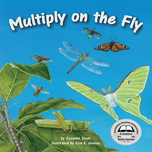 Multiply on the Fly  Audiolibri