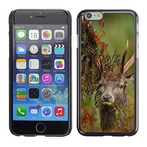 -for-apple-iphone-6-6s-47-inch-xtreme-cover-custodia-protettiva-case-shell-sear-turtle