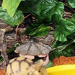 MagiDeal Reptile Vivarium Decoration Aquarium Ornament Artificial Grapes Ivy Vines 61 nMra11 2BL