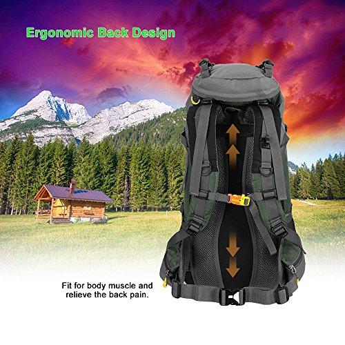 Lixada 50L Trekkingrucksack Wanderrucksack Reiserucksack Rucksack Mit Regenabdeckung Für Outdoor Grün 2