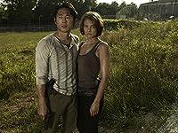 The Walking Dead - L'intégrale des saisons 1 à 7