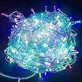 HanLuckyStars Guirnaldas Luminosas Cadena de luces 30M 300LED con 8 Modos de Cambio Resistente al agua para Adornos Boda Ceremonia árbol de Navidad Fiesta Jardín,Decoración Exterior e Interior + Remoto