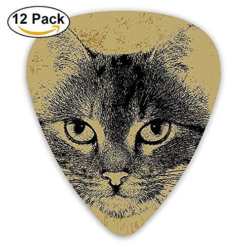 Retro Style Grunge Kitty Porträt Hipster Tier Staring Haariger Freund Artisan Plektren 12 Pack Für E-Gitarre, Akustikgitarre, Mandoline und Bass