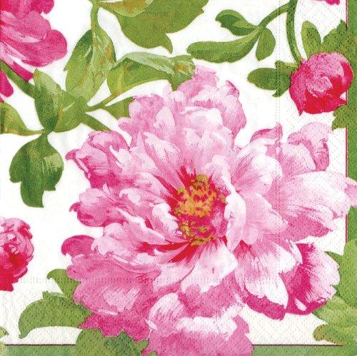 Caspari Entertaining - Tovaglioli di carta, confezione da 20 pezzi, serie Chloe, colore rosa