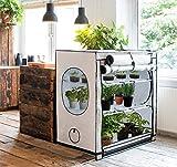 Homebox Vista Medium Zimmergewächshaus–Grow Zelt für Pflanzen