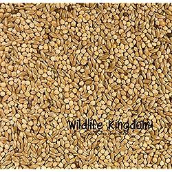 Heritage Classic Premium Budgie Budgerigar Mix Semillas pájaro alimentos piensos Millet mezcla y # x2714;