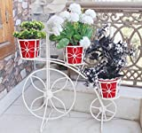 #5: NAYAB | Ivory Medium Floral Design Bicycle Planter with free metal pots/Cycle Style Metal Plant Stand/Garden Pot