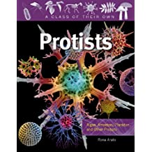 Protists: Algae, Amoebas, Plankton, and Other Protists (Class of Their Own (Paperback))