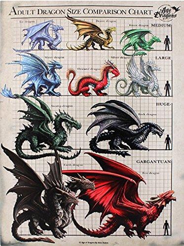 Alter von Erwachsenen Drachen Collection–Anne Stokes–dragon Größe Vergleich Diagramm–25cm x 19cm Wandschild