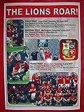 British & Irish Lions 2017 Tour to New Zealand - drawn series - souvenir print