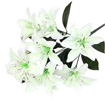 10x Demarkt Lilien Blumen Perfekte dekorative Blumen für ...