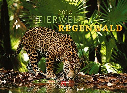 Tierwelt Regenwald - Kalender 2018 - Ackermann-Verlag - Wandkalender - 45 cm x 33 cm
