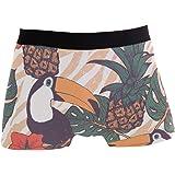 ZZKKO Mens Fashion Pineapple and Toucans Men's Underwear Boxer Briefs Breathable