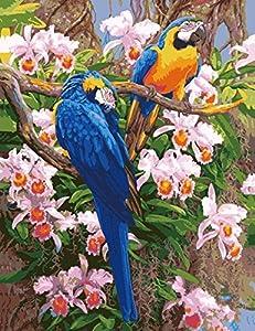Paint By Numbers kit, pitture animali per Adulti Bambini Anziani Junior, Pittura ad olio DIY su tela con telaio in legno (Pappagallo)