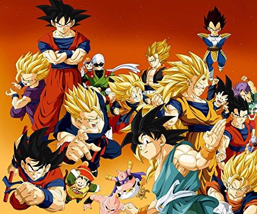 TST INNOPRINT CO Vegeta Gohan Buu Son Goku Trunk Videl Dragon Ball Z Poster 24x28 inches (Große Ball Poster Dragon Z)