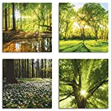 Artland Leinwandbilder auf Holz Wandbild Bild Set 4 teilig je 20x20 cm Quadratisch Landschaft Wald Grün Wald Bach Frühling Windrosen Sonne Baum K2FR