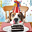 Beagle Dog Birthday Card - Sniff The Cake