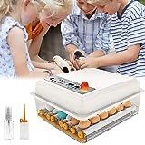 PAKASEPT Incubateur Oeufs Couveuse Automatique 16 œufs Retournement Automatique Mini Appareil à Couveuse Température Réglable