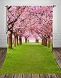NIVIUS PHOTO® 150*220CM Landschaftsfotografie Kulisse für kinder dünne folien sakura Fotografie Hintergrund für studio d-9377