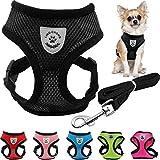 Tierbedarf für Katze und Hund, Verstellbarer Brustgurt Atmungsaktives Mesh Small Dog Pet Harness und Leine Set Puppy Vest Einstellbare Brustgurt (Color : Red, Size : L)