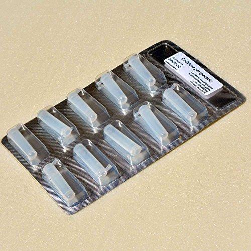Koppert - Plaquette de 10 recharges de phéromones pour piège à pyrales du buis
