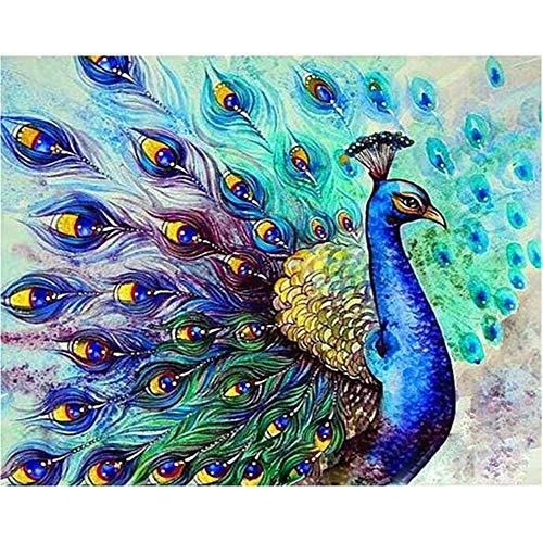 ADVLOOK Digitales Malen Nach Zahlen Für Erwachsene Pfau Eröffnung Tier Erwachsene Kinder Anfänger Handgemalte Acrylfarbe Auf Leinwand DIY Art Hauptdekoration Geschenk Rahmenlos 40X50Cm -
