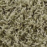 Teppichboden Auslegware | Hochflor Langflor | 400 und 500 cm Breite | hell-grün | Meterware, verschiedene Größen | Größe: 1,5 x 5 m