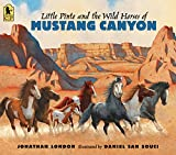 Little Pinto and the Wild Horses of Mustang Canyon