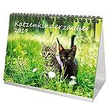 Katzenkinderzauber · DIN A5 · Premium Tischkalender/Kalender 2019 · Katzenkinder · Katzenbabys · Katzen · Stubentiger · Tier · Edition Seelenzauber