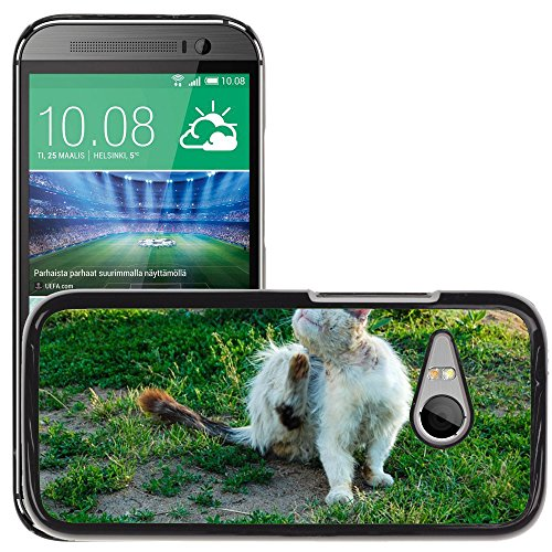 hulle-case-schutzhulle-cover-premium-case-m00125288-homeless-cat-voller-flohe-katze-htc-one-mini-2-m