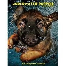Underwater Puppies 2015 Engagement Calendar by Seth Casteel (2014-09-29)
