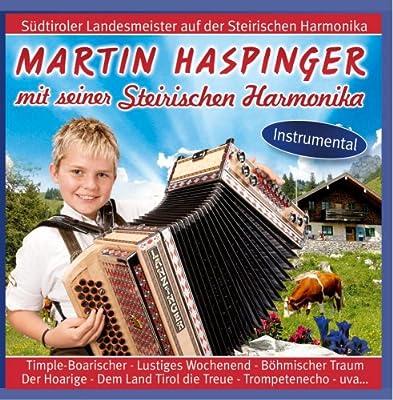 Mit seiner Steirische Harmonika - Instrumental