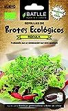 Semillas Batlle - Brotes Ecológicos De Rucula