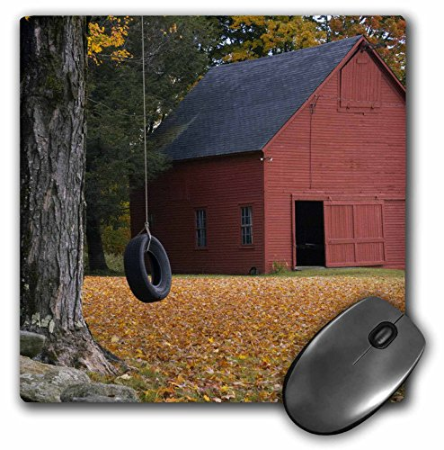 3drose-llc-8-x-8-x-025-inches-mouse-pad-tire-swing-along-a-road-in-southern-vermont-usa-raymond-klas