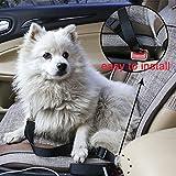 iMounTop Auto Hunde Sicherheitsgurt Hundegurt Sicherheitsgeschirr Hunde Adapter Autosicherheitsgurt Anschnallgurt Einstellbar 16.5-27.5 inch 2 Stück (Rot + Schwarz) - 6