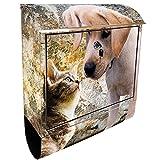 KlebeSpatz® Motiv Wand Briefkasten Maxi LB mit Zeitungsfach Zeitungsrolle für C4 Welpe Labrador und Katze