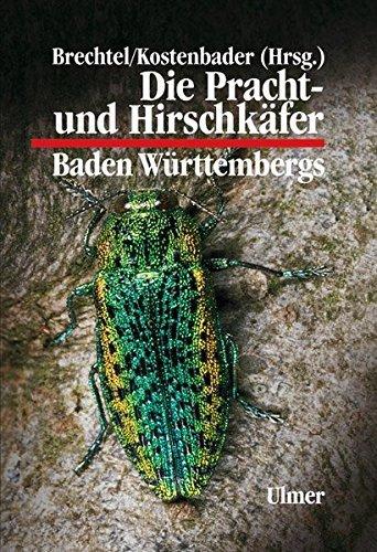 Die Pracht- und Hirschkäfer Baden-Württembergs (Grundlagenwerke) by Fritz Brechtel (2002-01-01)