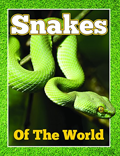 Snakes Of The World: From Pythons to Black Mamba (Awesome Kids Educational Books) (English Edition) -