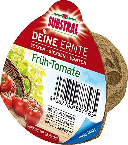 Substral Deine Ernte Saatkegel Früh-Tomate Kegel aus Keimsubstrat, Dünger und Samen, 1 Stück