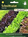 Schnittsalat Fitness Mix Salat vitaminreich